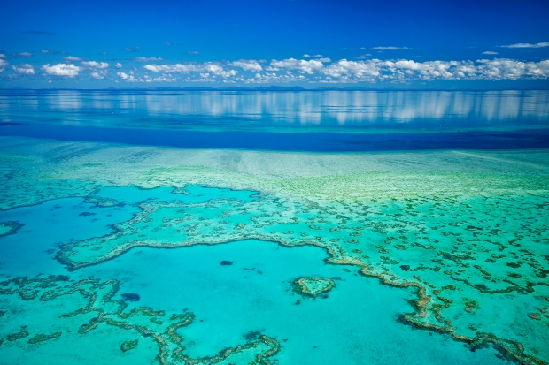 Ariel view of the great barrier reef